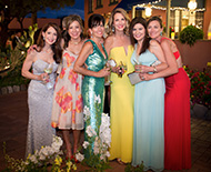 2015 Silver & Turquoise Ball